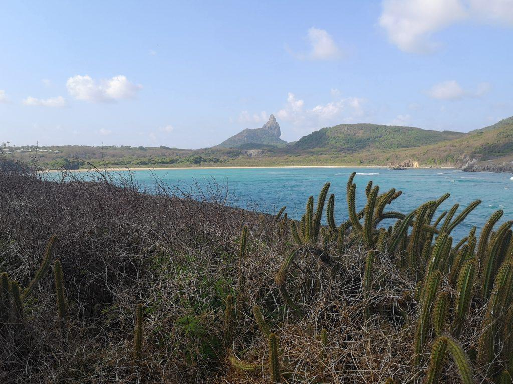 Noronha Mirante Praia do Sueste 2