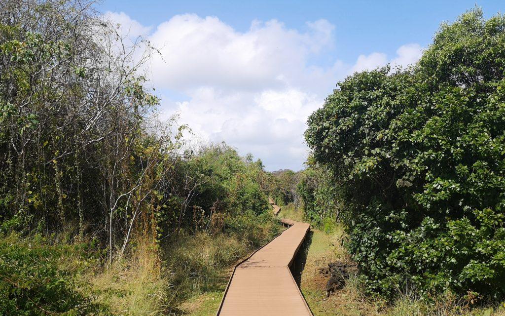 Noronha Nationalpark 2
