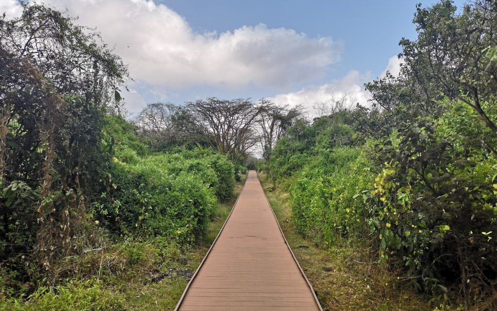 Noronha Nationalpark 3