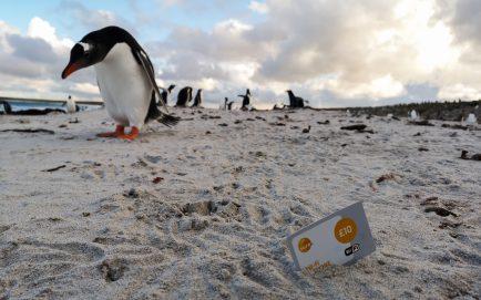 Sure Wifi Card Falkland